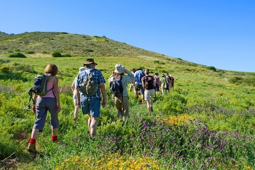 A photo of a line of hikers on a green hillside with a blue sky
